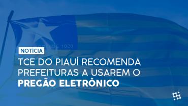 TCE do Piauí recomenda prefeituras a utilizarem o pregão eletrônico